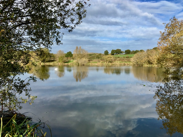 Newdigate Farms fishing ponds - simply stunning all through the year.  A peaceful place to be.