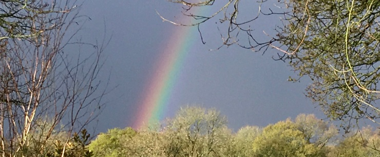 Rainbow - there must be gold at the end of it!